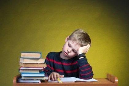 Lesekompetenz