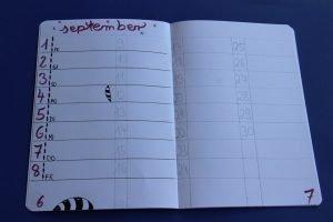 Bullet Journal Schritt für Schritt