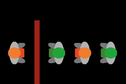 Craftys Hüte Rätsel